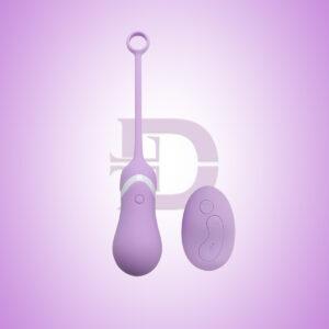 EGG Vibrator (Remote) 13